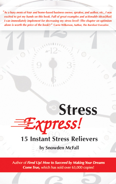 Stress express book cover