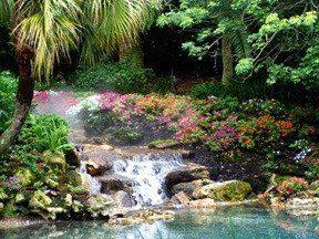 tropicalbrookLR